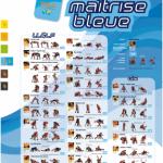 affiche-bleue-batfinal1872870368