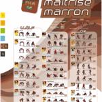 affiche-marron-batfinal1520067985